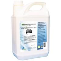 Shampoing carrosserie écologique - IDEGREEN - 5L - Ecolabel