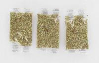 Granulés antiallergies parfum MENTHE EUCALYPTUS - 3x6g - BOURNOVILLE