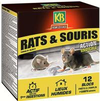 Blocs souris rat - Home défense - KB
